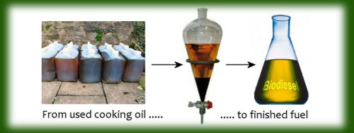 Evergreen Oil Feed Used Cooking To Recycling
